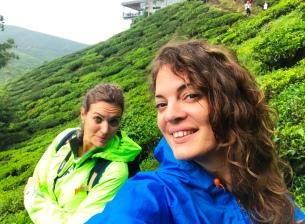 """CAMERON HIGHLANDS, Boh Tea Plantation, Malaysia #2017. """"Vuoi che partiamo subito per la nostra avventura?"""" domandò Peter Pan """"o preferisci prendere il tè?"""" """"Prima il tè"""" rispose Wendy (Peter Pan)."""